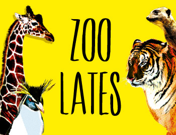 zoo-lates-2013-new-13581