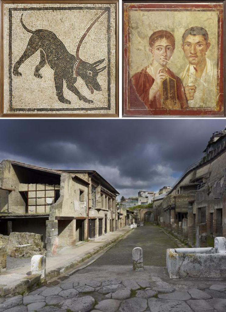 Life and death Pompeii and Herculaneum - London