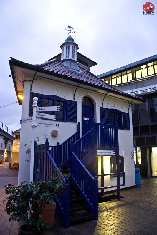 Battersea Dogs and Cats Home - London